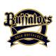 オリックス・バファローズ対福岡ソフトバンクホークス 公式戦