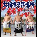 平成28年秋巡業 大相撲京都場所