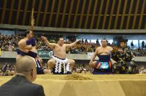 平成29年 春巡業 大相撲 富士山静岡場所