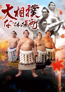 平成29年秋巡業 大相撲なにわ場所