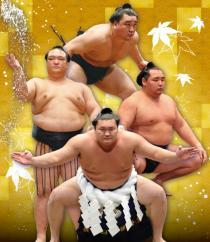 メ~テレ開局55周年記念 平成二十九年秋巡業 大相撲高山場所