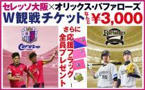 セレッソ大阪×オリックス・バファローズ W観戦チケット