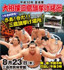 平成30年 夏巡業 大相撲三島旗挙げ場所