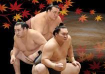 平成三十年秋巡業 大相撲豊田場所