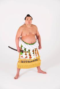 第七十代横綱 日馬富士引退断髪披露大相撲
