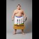 2019年夏巡業 大相撲