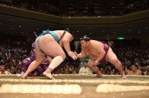 長野県立武道館開館記念 令和2年 春巡業 大相撲佐久場所