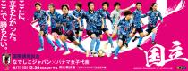 なでしこジャパン(日本女子代表) 国際親善試合