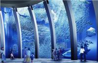 横浜・八景島シーパラダイスに新展示水槽が登場