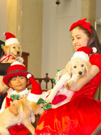 子犬を抱っこして登場した加藤清史郎、アヤカ・ウィルソン
