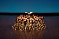 2013年公演 ストラヴィンスキー・ザ・バレエ《春の祭典》 (c)青柳聡
