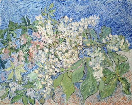 フィンセント・ファン・ゴッホ《花咲くマロニエの枝》