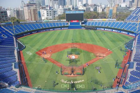 バックネット裏屋上から見下ろした横浜スタジアム