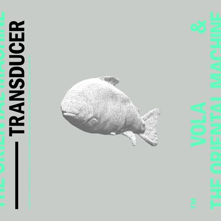 『TRANSDUCER』
