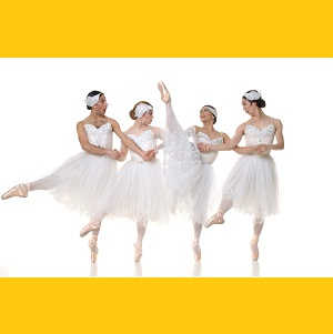 ◎グランディーバ バレエ団