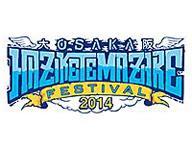 OSAKA HAZIKETE MAZARE FESTIVAL 2014