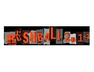RUSH BALL 2014