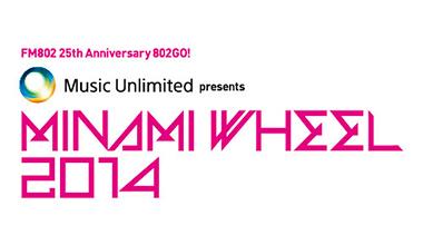 MINAMI WHEEL 2014(大阪府)