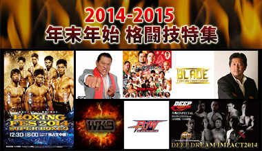 2014-2015年末年始格闘技特集