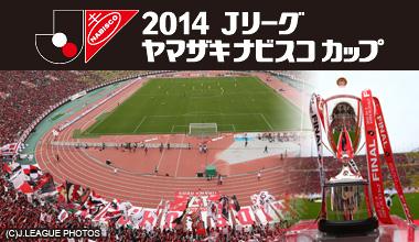 2014Jリーグ ヤマザキナビスコカップ決勝 (埼玉県)
