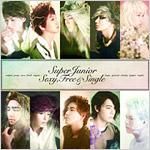 SUPER JUNIOR シングル『Sexy,Free & Single』