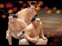 大相撲豊田場所