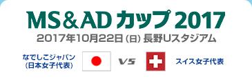 MS&ADカップ2017