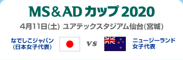 MS&ADカップ2020