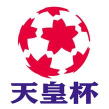 第95回 天皇杯全日本サッカー選手権大会