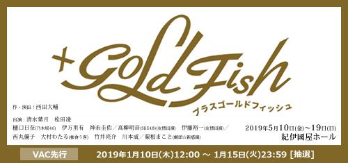 「GOLDFISH」
