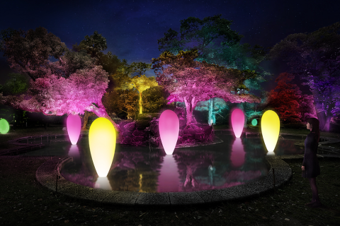 RCCテレビ60年「チームラボ 広島城 光の祭」