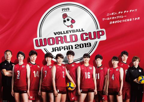 バレーボール 全日本 男子