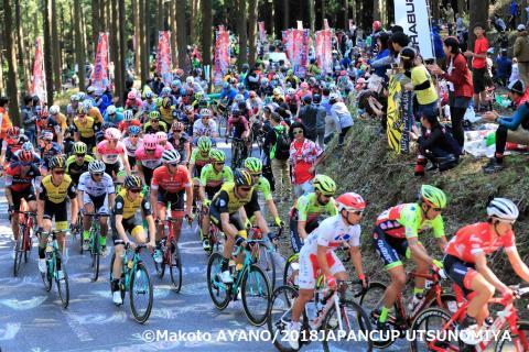 2019 JAPAN CUP CYCLE ROAD RACE in UTSUNOMIYA